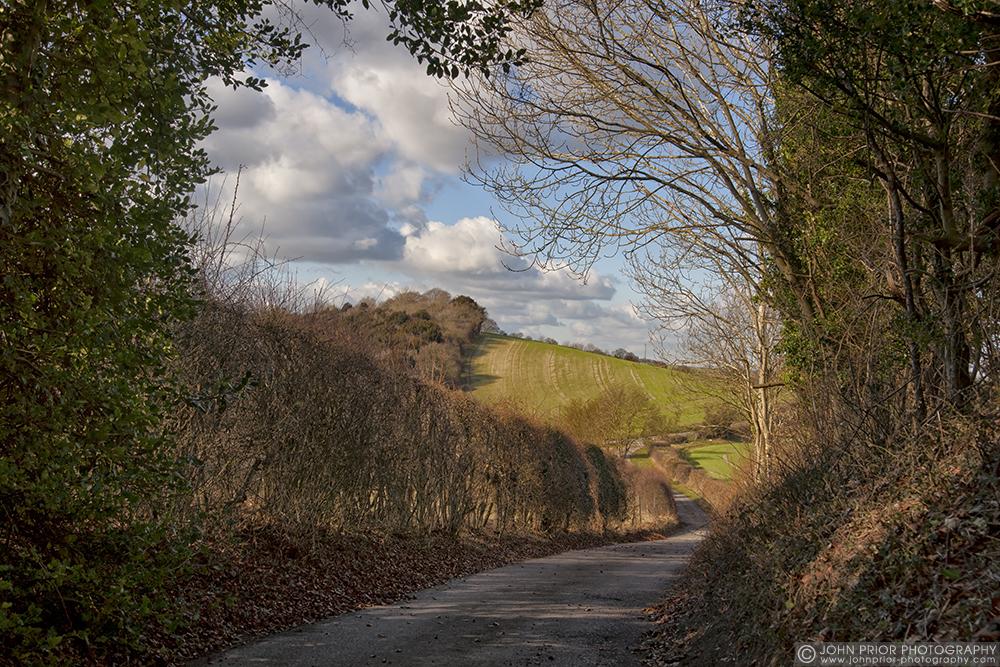 photoblog image Down the lane