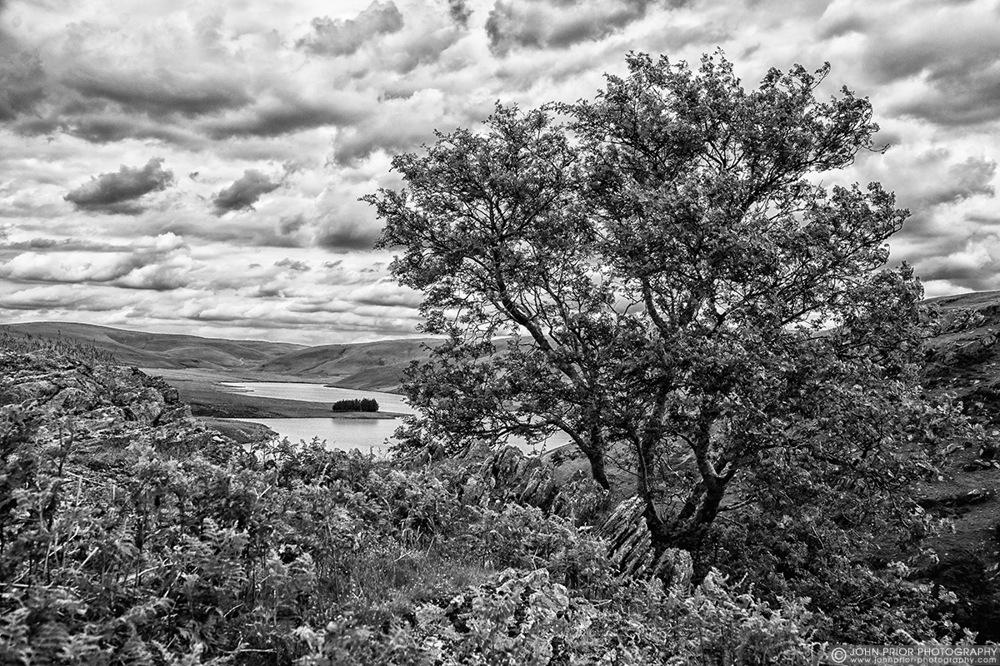 photoblog image Elan landscape