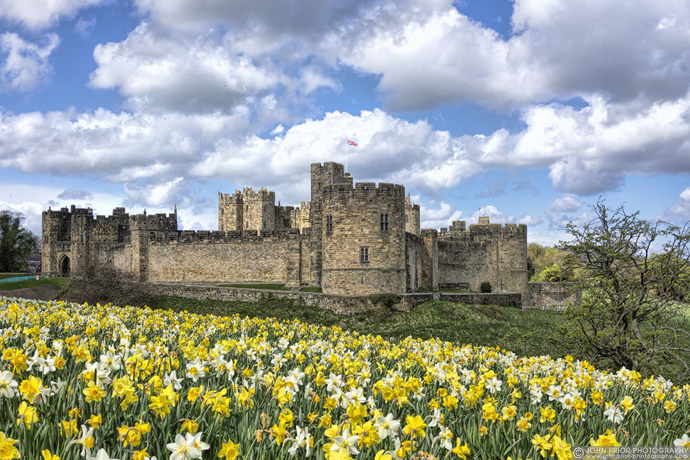 photoblog image Springtime at Alnwick